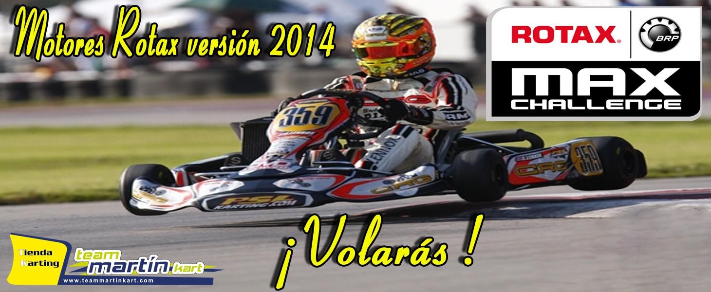 Motore Rotax 2014